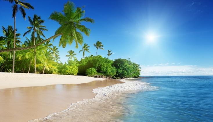 bog_caribbeancelebration