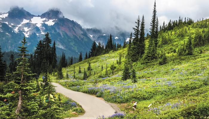 Alaska_Wilderness